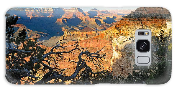 Grand Canyon South Rim - Sunset Through Trees Galaxy Case