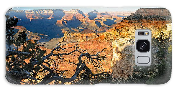 Grand Canyon South Rim - Sunset Through Trees Galaxy Case