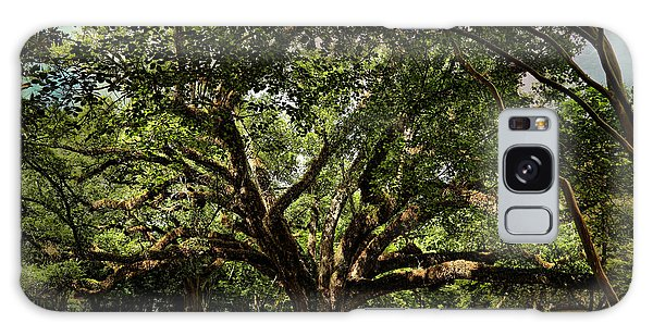 Grand Oak Tree Galaxy Case by Judy Vincent