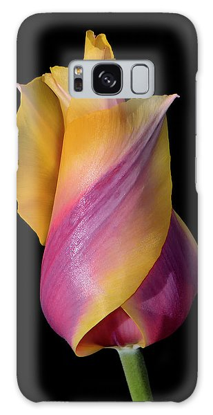 Grand Opening - Purple And Yellow Tulip 001 Galaxy Case