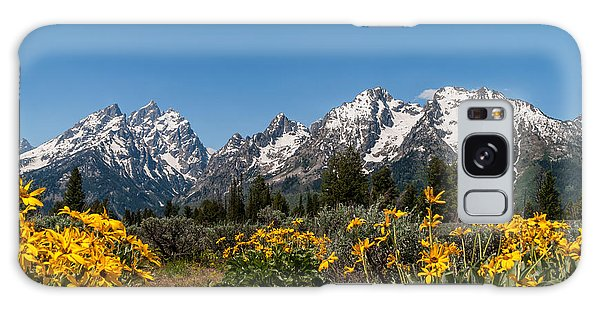 Teton Galaxy Case - Grand Teton Arrow Leaf Balsamroot by Brian Harig