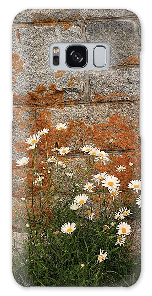 Granite Daisies Galaxy Case