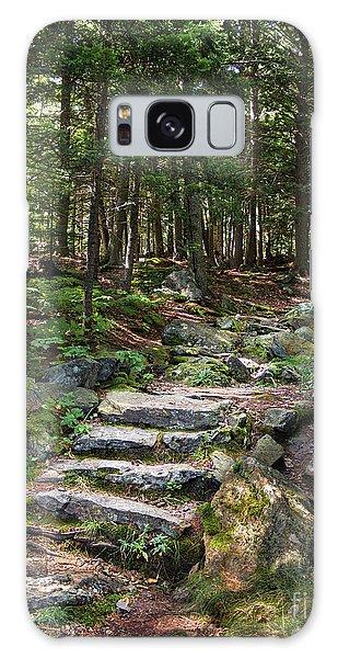 Granite Steps, Camden Hills State Park, Camden, Maine -43933 Galaxy Case