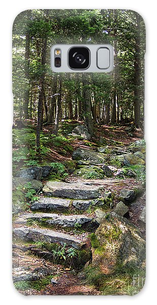 Granite Steps, Camden Hills State Park, Camden, Maine -43933 Galaxy Case by John Bald