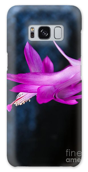 Granny's Christmas Cactus Galaxy Case by Marilyn Carlyle Greiner