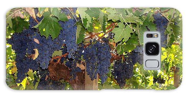 Grapes Are Ready Galaxy Case by Judy Kirouac