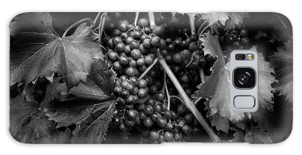 Grapes In Black And White Galaxy Case