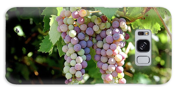 Grapes In Color  Galaxy Case