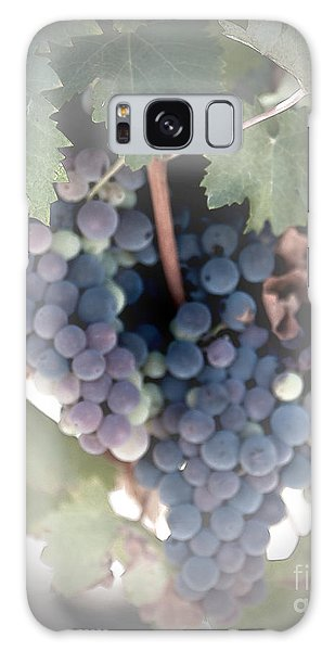 Grapes On The Vine I Galaxy Case by Sherry Hallemeier