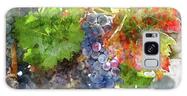 Grapes On The Vine In The Autumn Season Galaxy Case