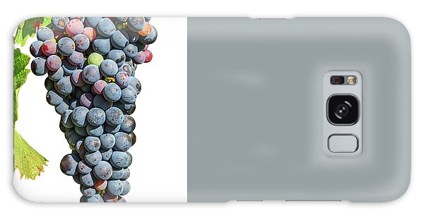 Grapes On Vine Galaxy Case