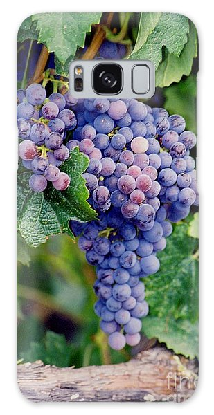 Galaxy Case featuring the photograph Grapes by Sandy Adams