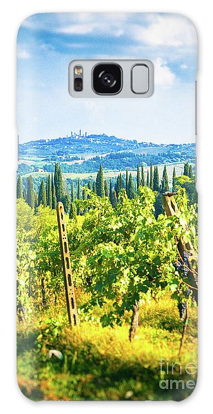 Galaxy Case featuring the photograph Grapevine In San Gimignano Tuscany by Silvia Ganora