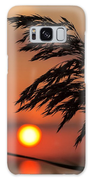 Grass Silhouette Galaxy Case