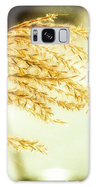 Grasses Of Gold Galaxy Case
