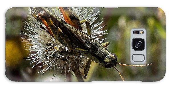 Grasshopper 1 Galaxy Case