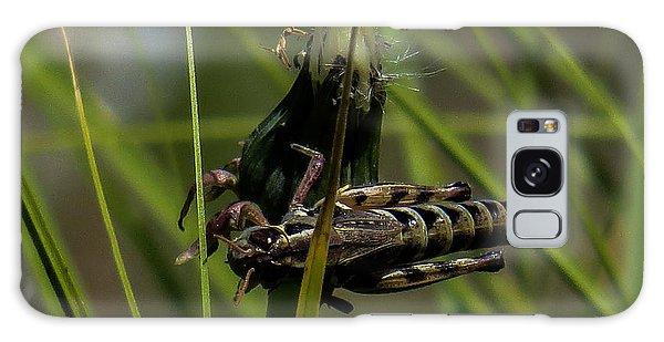 Grasshopper 2 Galaxy Case