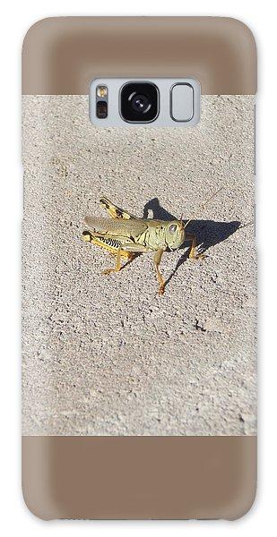 Grasshopper Curiosity Galaxy Case