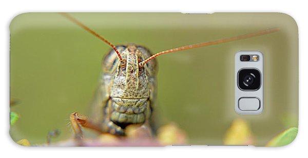 Grasshopper Galaxy Case by Janice Spivey