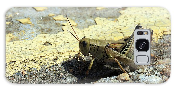 Grasshopper Laying Eggs Galaxy Case