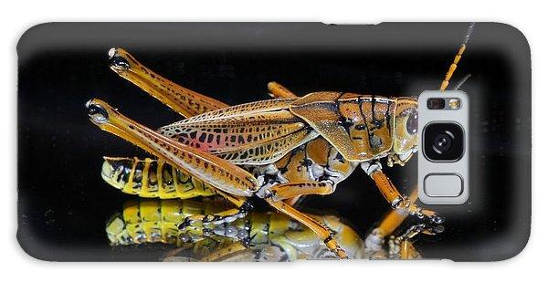 Grasshopper Reflected Galaxy Case