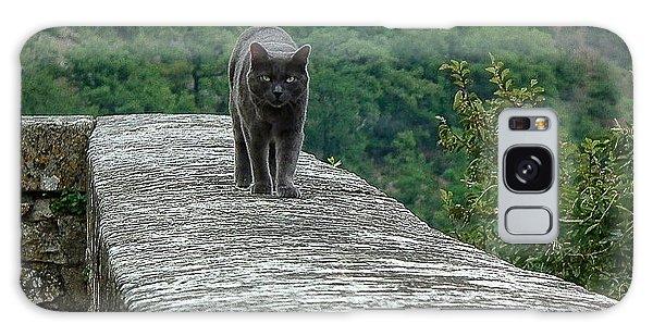 Gray Cat Prowling Galaxy Case