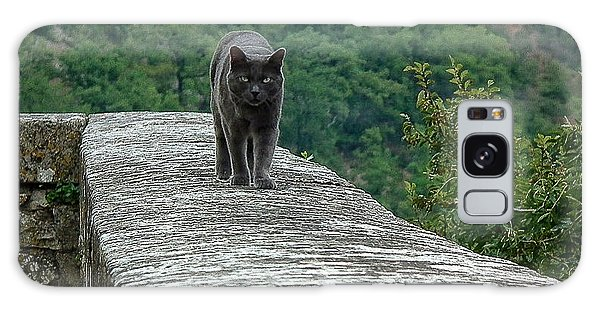 Gray Cat Prowling Galaxy Case