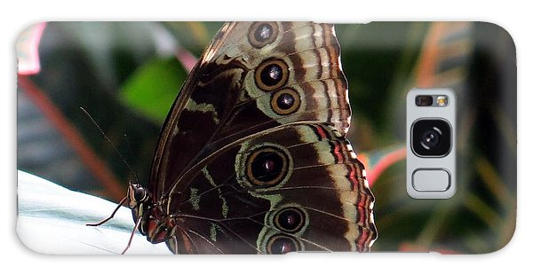 Gray Cracker Butterfly Galaxy Case