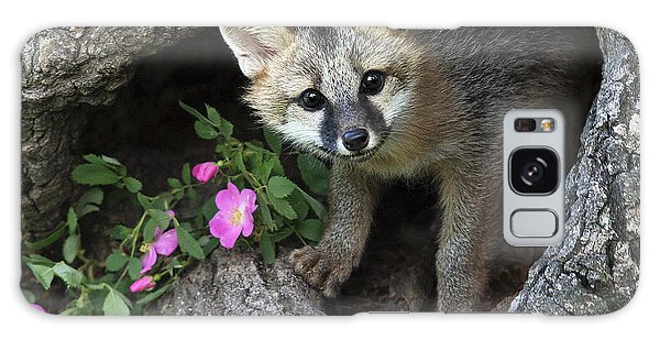 Gray Fox Kit Galaxy Case