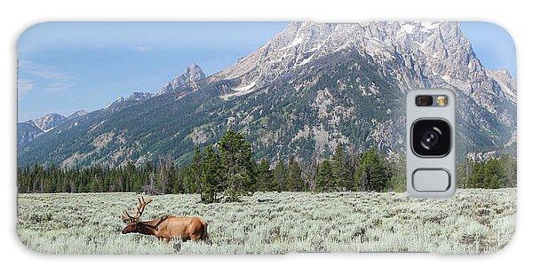 Grazing Elk In Grand Teton National Park Galaxy Case