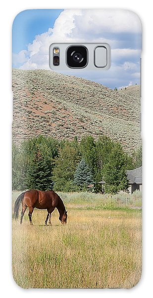 Grazing Horse Galaxy Case