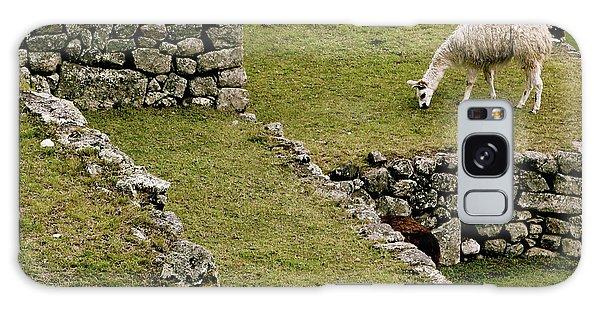 Grazing In Machu Picchu Galaxy Case