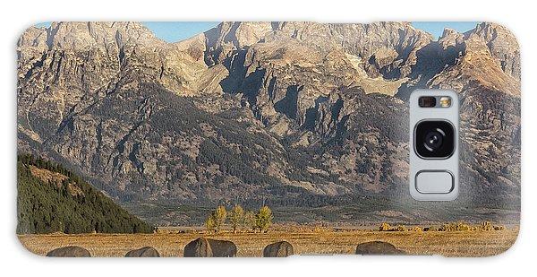 Grazing Under The Tetons Wildlife Art By Kaylyn Franks Galaxy Case