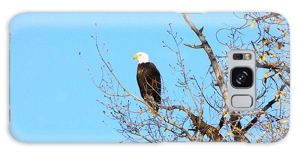 Great American Bald Eagle Galaxy Case