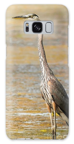 Great Blue At The Flats Galaxy Case by Robert Frederick