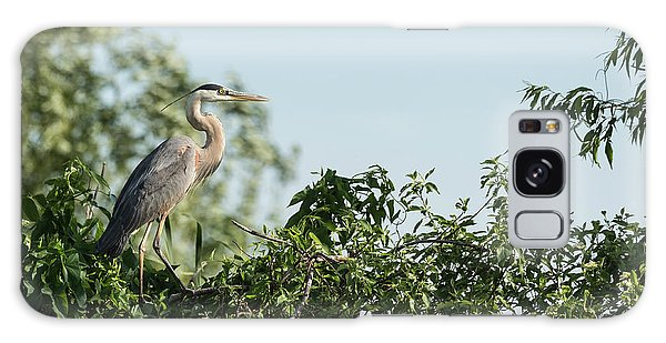 Great Blue Heron  2015-18 Galaxy Case by Thomas Young