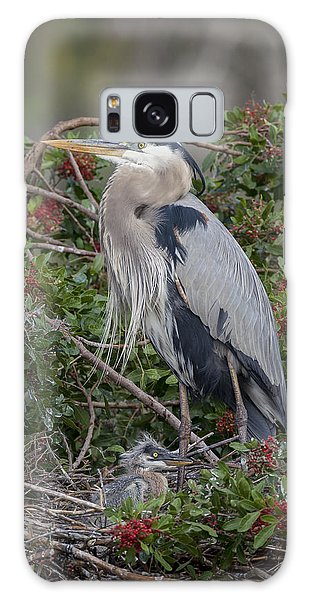 Great Blue Heron And Nestling Galaxy Case