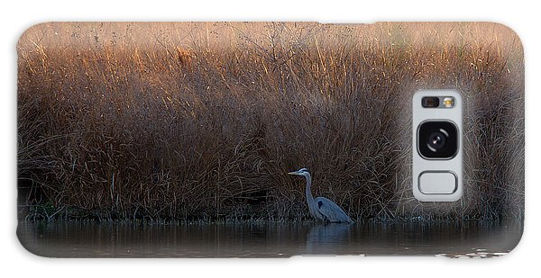 Great Blue Heron And Sunlit Field Galaxy Case