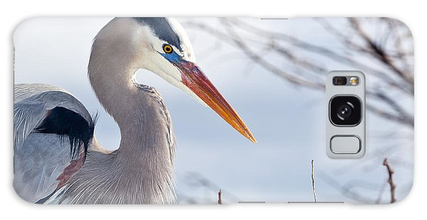 Great Blue Heron At Wakodahatchee Wetlands Galaxy Case by Michelle Wiarda