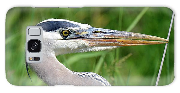 Great Blue Heron Close-up Galaxy Case
