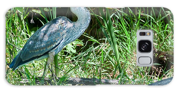 Great Blue Heron Fish Meal Galaxy Case by Edward Peterson