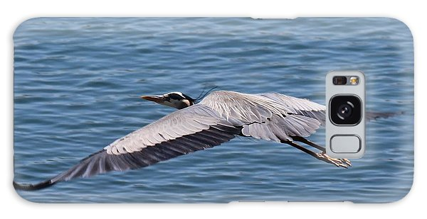 Great Blue Heron Flying Over Morro Bay Galaxy Case