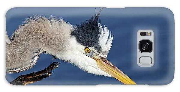 Great Blue Heron - Good Scratch Galaxy Case