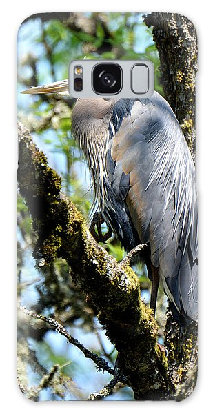 Great Blue Heron In A Tree Galaxy Case