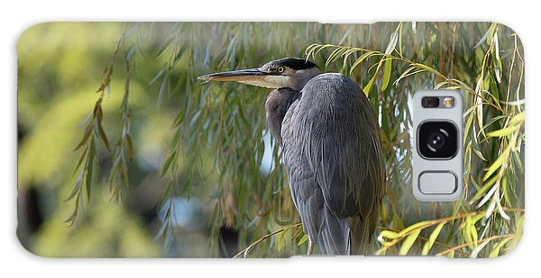 Great Blue Heron In A Willow Tree Galaxy Case by Keith Boone