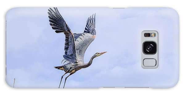 Great Blue Heron In Flight Galaxy Case by Keith Boone