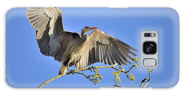 Great Blue Heron Galaxy Case by Kathy King
