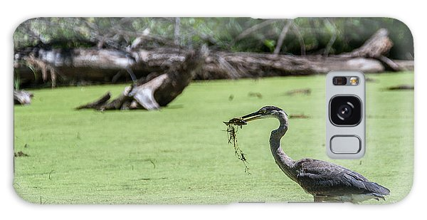 Great Blue Heron Main Meal Galaxy Case by Edward Peterson