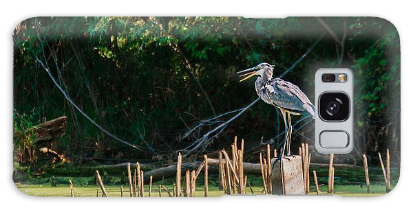 Great Blue Heron Mouth Galaxy Case by Edward Peterson