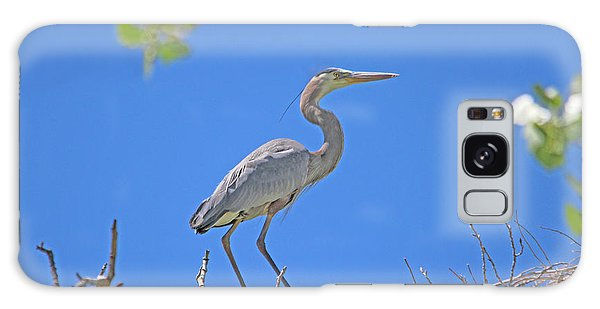 Great Blue Heron Nest Protector  Galaxy Case